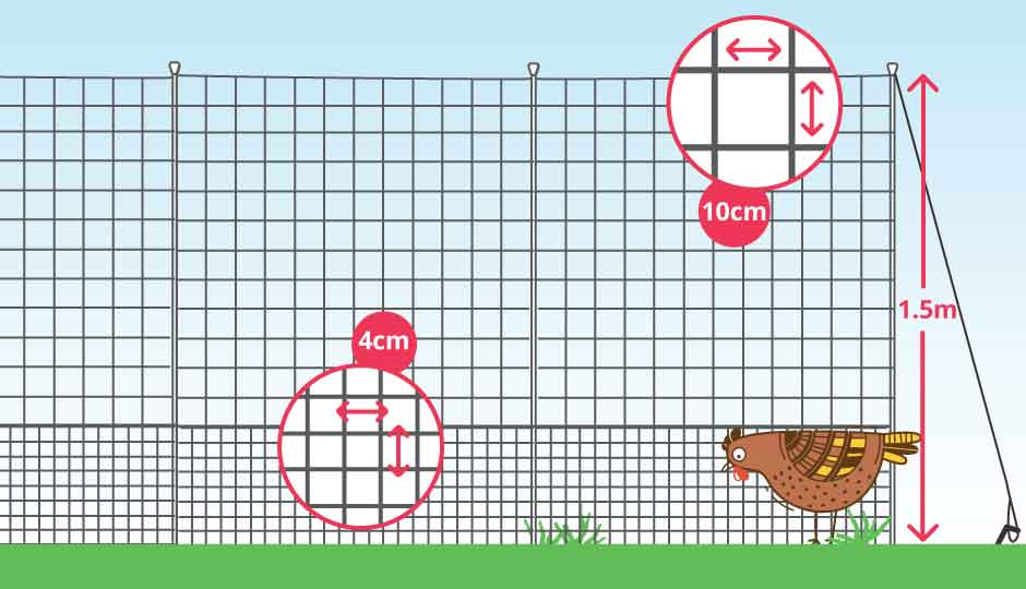 chicken fencing with height and netting measurements