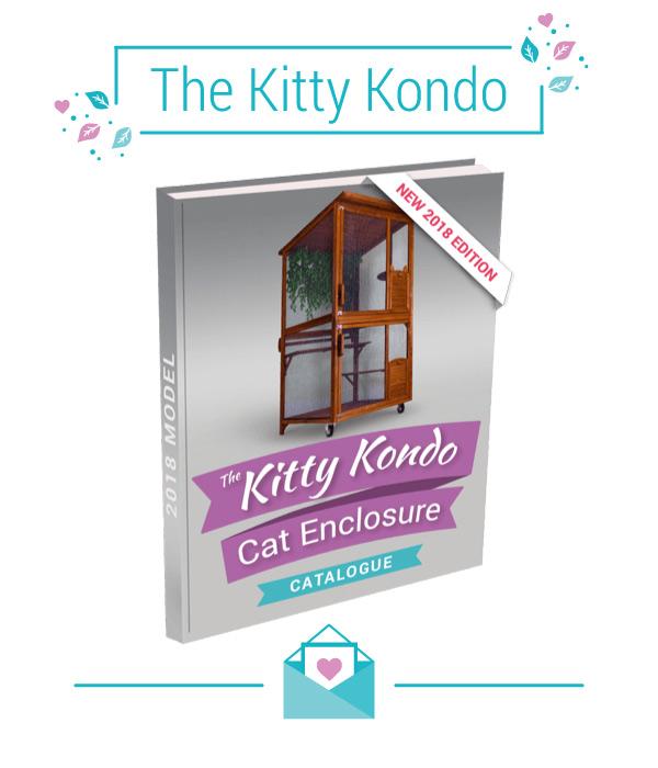 Kitty Kondo